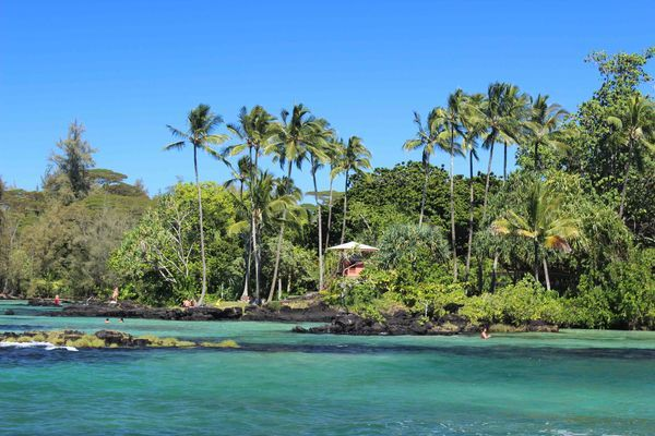 Salutem Natura: En Hawái, las enfermeras podrán recetar cannabis m...