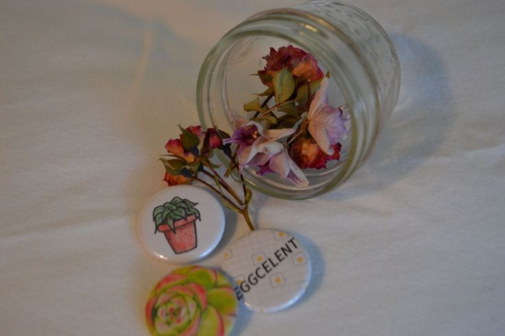 The product Succulent Collection is sold by Willow Pins in our Tictail store.  Tictail lets you create a beautiful online store for free - tictail.com
