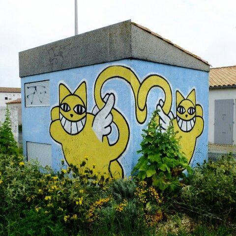 Monsieur chat - Île de Ré, Ars en Ré