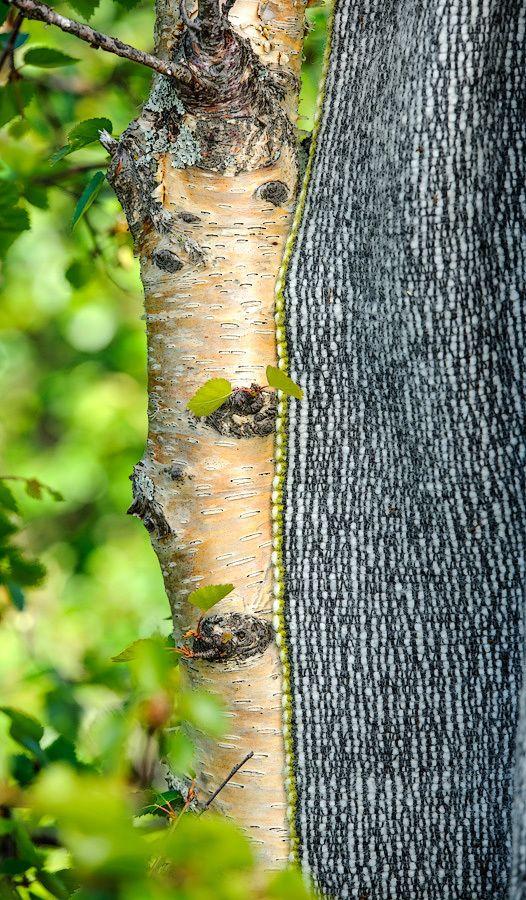 Birch - woolen blanket, inspired by Norwegian nature. Handwoven, 100 % wool. Weaving is my passion!