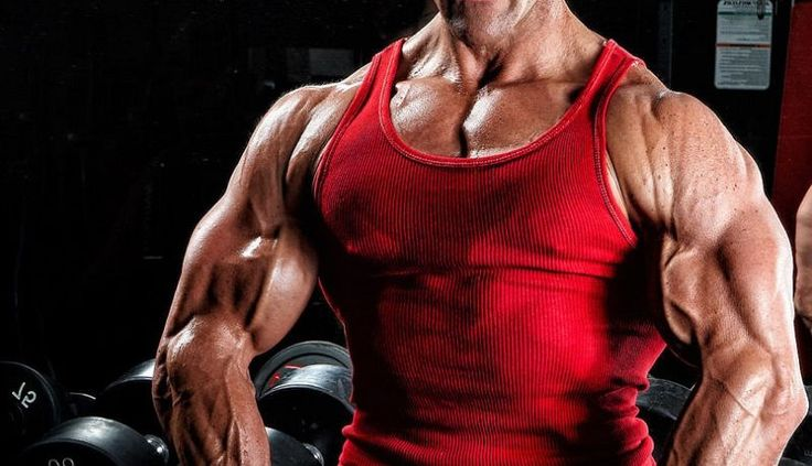 how to bulk and cut cycle