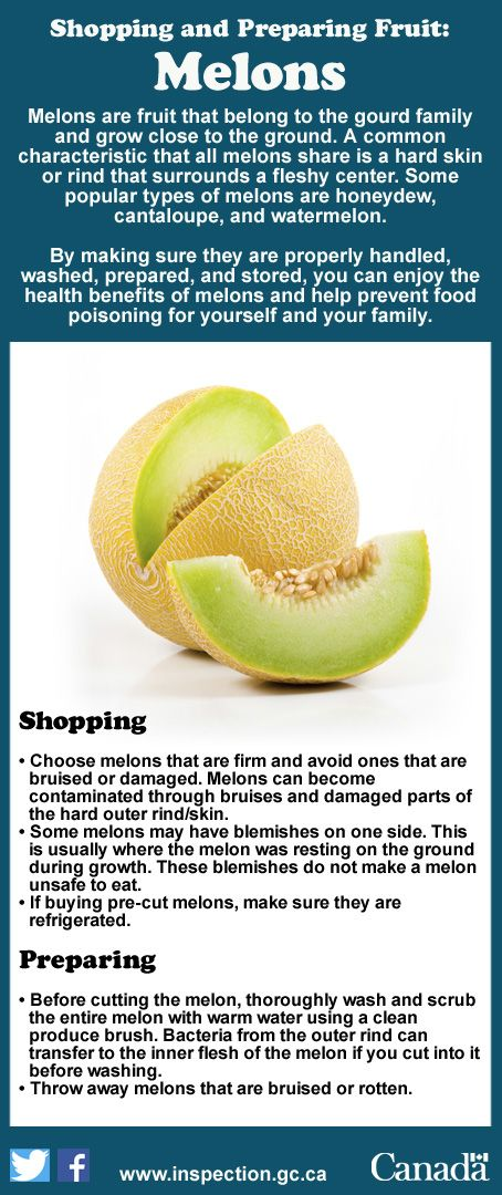 Learn to shop for and prepare melons in order to lower the risk of food poisoning.