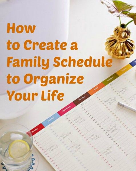How is your life schedule?