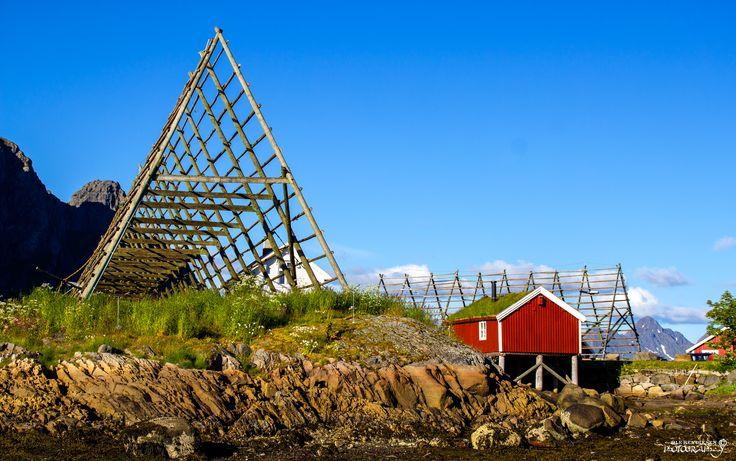 Svinøya in Lofoten