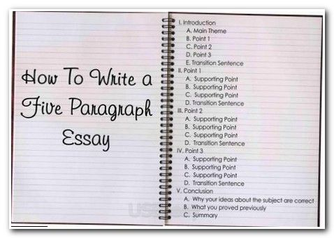 essay writing sample examples