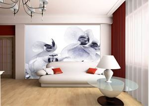 Wall-By-Wall | Witte orchidee fotobehang. Een licht en fris interieur, maar toch een extra toets in je ruimte. Deze wallprint van witte orchideeën is de ideale keuze!