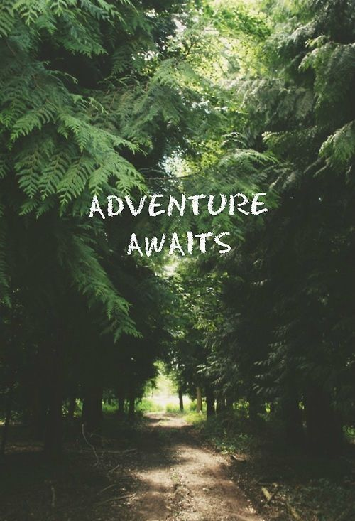 #travel #quotes #adventure Know some one looking for a recruiter we can help and we'll reward you travel to anywhere in the world. Email me, carlos@recruitingforgood.com