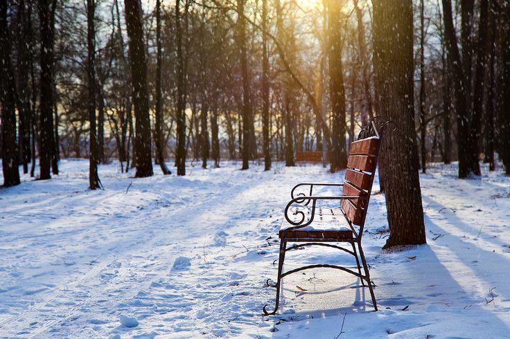 First winter day by Maratti Z