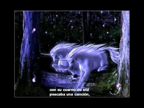 Mi unicornio y yo hicimos amistad un poco con amor ...un poco verdad...