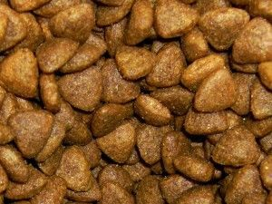Homemade Dry Cat Food Recipe (Kibble)