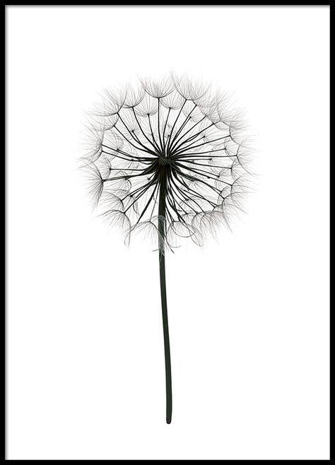 Die besten 25+ Schwarz weiß zeichnungen Ideen auf Pinterest - schlafzimmer schwarz weiß