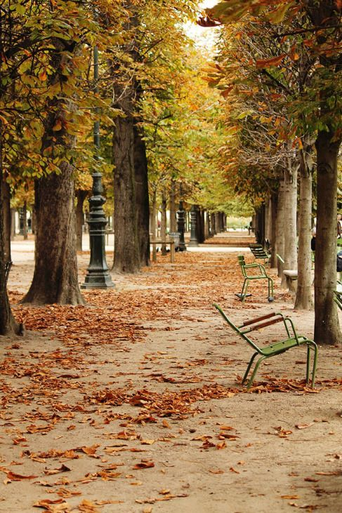 paris-photo-automne