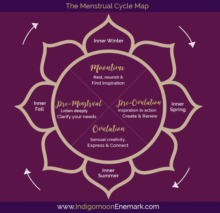 I think of my menstrual cycle as my muse. The journey of understanding the phases of my inner cycle, was a journey of healing and coming home. Today it is