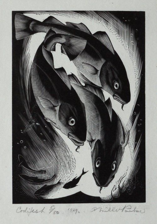 Codfish, 1929 by Agnes Miller Parker (Scottish 1895-1980) wood engraving