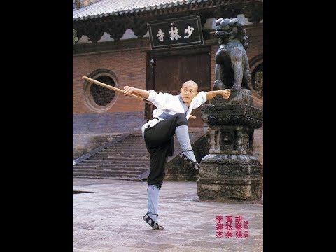 Кулак из Шаолиня 1993
