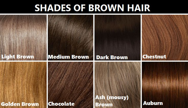 realrandomsam: smaugnussen: goddessofsax:   how to write  Hair chart, Brown hair shades