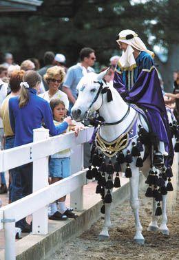 Kentucky Horse Park: Top Ten Things to do in Lexington
