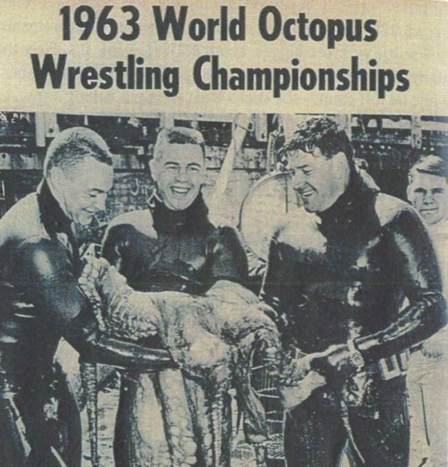 После Второй Мировой войны в США был популярен особый вид спорта — борьба с осьминогом. Ныряльщик, схватившийся с осьминогом на небольшой глубине, должен был вытащить его на поверхность. В 1960-е годы проводились ежегодные чемпионаты (World Octopus Wrestling Championships). Награды получали ныряльщики или команды ныряльщиков, добывшие самое крупное животное. После соревнований осьминоги могли быть как употреблены в пищу, так и переданы в местный зоопарк либо возвращены в море.  Журнал…