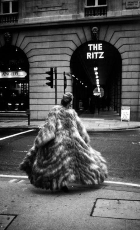 ZsaZsa Bellagio – Like No Other: It's Glamorous