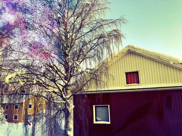 ‪🍂19..🍁‬ ‪#nature #naturelovers #art #artlovers #artwork #lights #house #photography #snow #Twitter #new #photo #photos #pic #pics #tree #korpilombolo #korpis #sweden #sverige #encaustic #colorful #me #mine #my #message #love #life #world #memories #story #fantasy‬ ‪🍂20..🍁‬