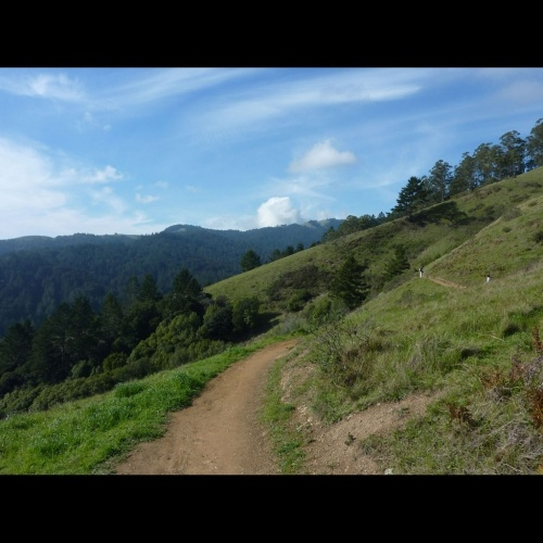 Muir Woods and Tourist Club Loop. Backdoor entry to Muir Woods on an uncrowded trail where you can enjoy scenery (and a bar!) most visitors never see.