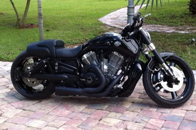 harley davidson v rod muscle blacked out google zoeken. Black Bedroom Furniture Sets. Home Design Ideas