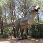Musee-parc des dinosaures à Mèze - Tyranosaure