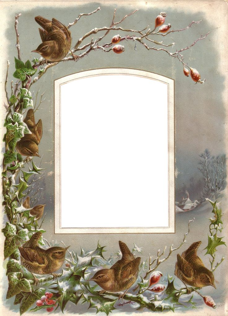 Vintage Winter Birds Frame ~ Zibi Vintage Scrap