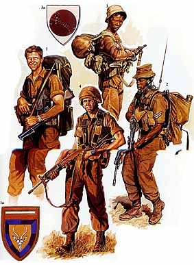 Osprey Men-at-Arms 242 - Modern African Wars (3)