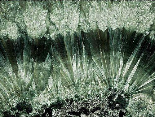 Серафинит (клинохлор)