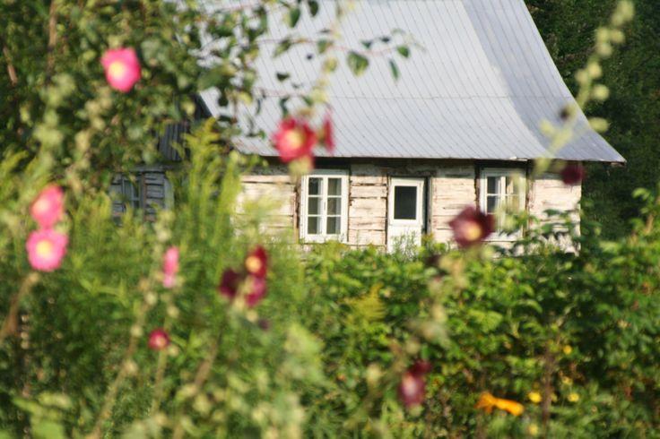 maison et fleur