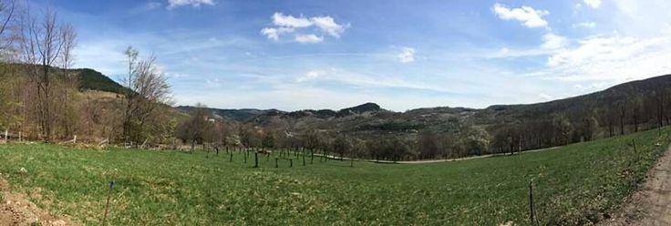 Lep i sunčan dan u selu Rakovica, Čigota