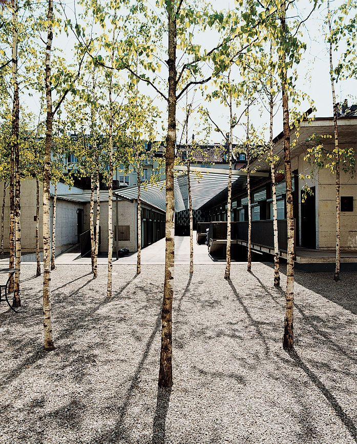 Birch trees add an Asian touch to the Greulich Hotel by Romero + Schaefle Architects.