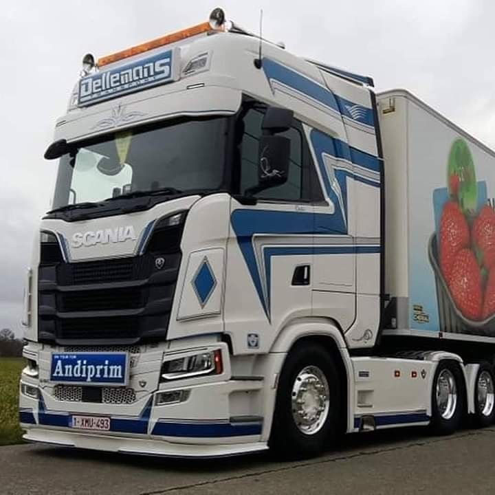 Pin By Pedro Henrique Santos De Olive On Scania Veicoli Pesanti In 2020 Vehicles Volvo Trucks Trucks