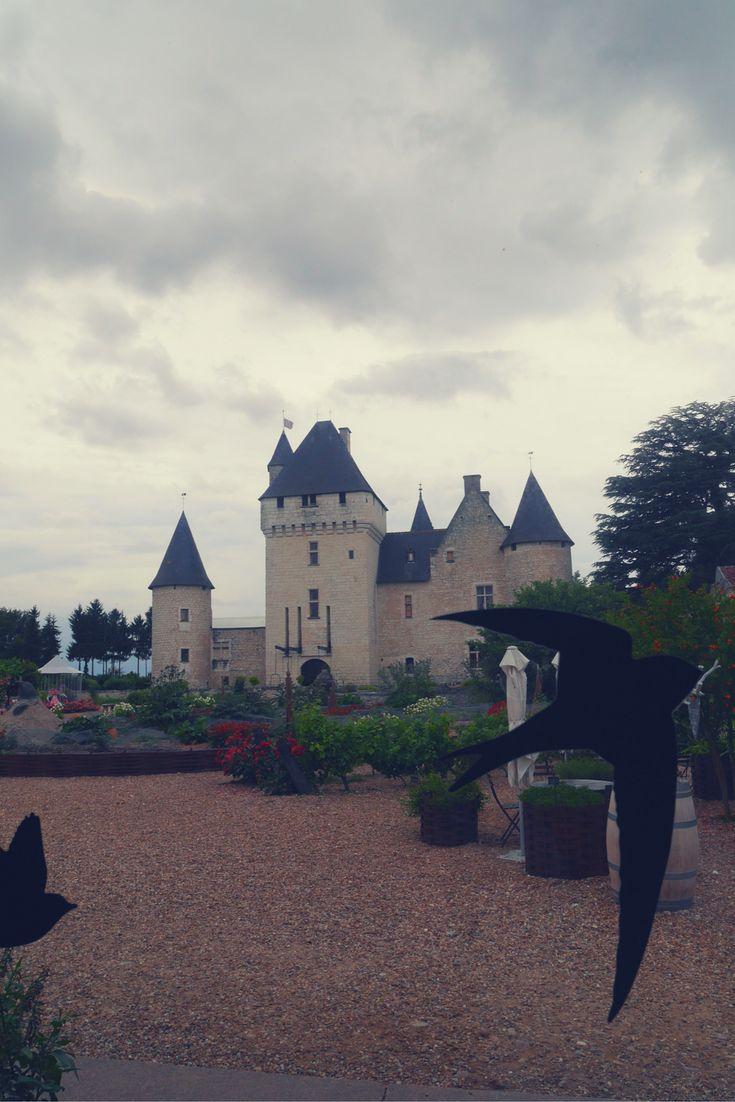 Les hirondelles se font nombreuses cette annéeau château du Rivau! Elles annoncent les vacances! The swallows are  several in the Rivau castle. They are a sign of hollidays!   #holliday #vacance #swallow #hirondelle #castle #chateau #chateaudurivau  #youtube #youtubechateauet jardinsdurivau