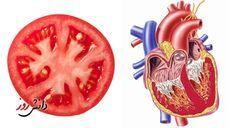 Minden növény nyersen fogyasztva arra a szervre jó, azt a szervet gyógyítja, amelyikre hasonlít!  A gombák különleges élőlények, se nem állatok, se nem...