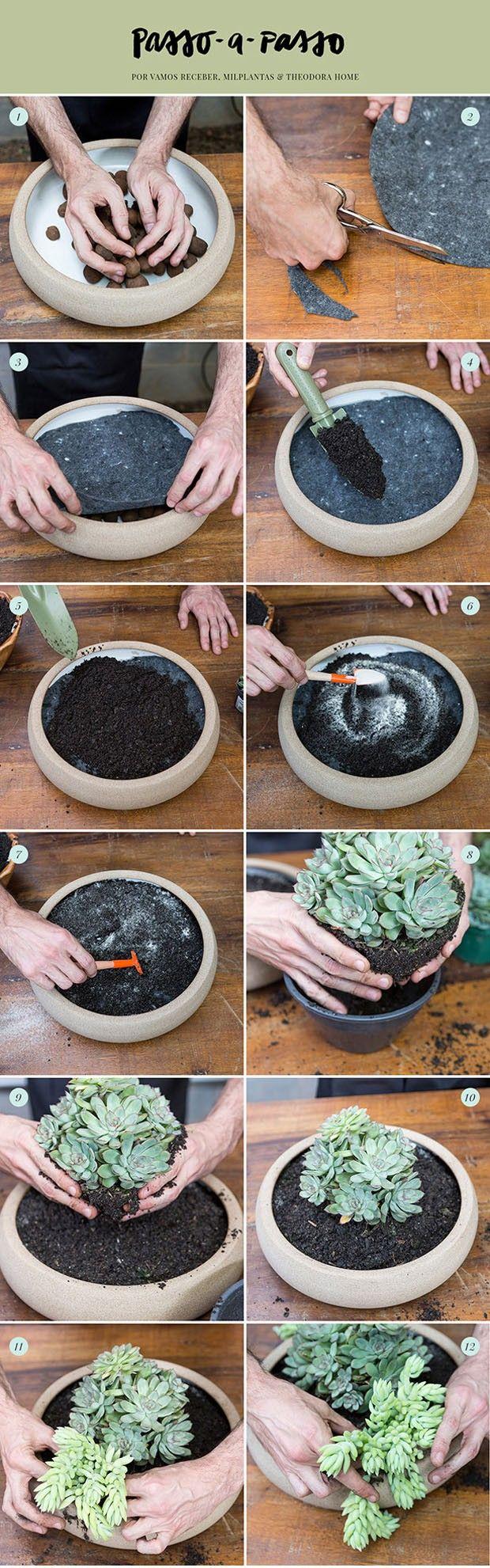 Como montar um arranjo com suculentas (Foto: Douglas Daniel | Arte Karen Hofstetter)