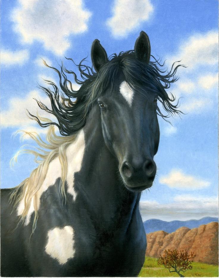 Stunning Wild Mustang Black Paint Horses 2 Closed