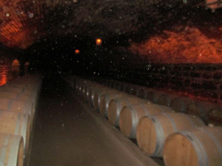 Concha y Toro Chile - Barris do vinho Casillero del Diablo.