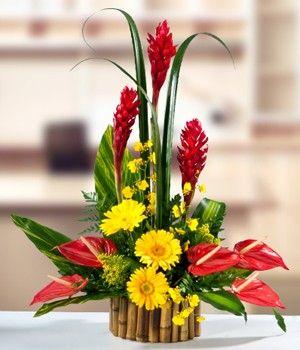 arreglos de flores arreglos florales flores naturales ramos florales calas gaby bordado flores tropicales ikebana