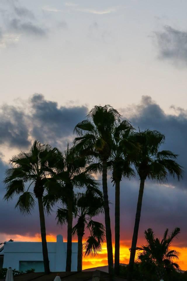Sunset ☮