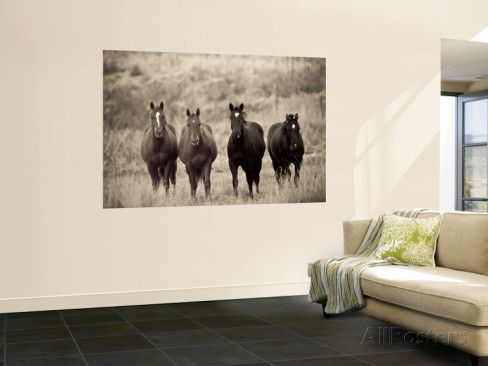 Horses  Montana  USA Wall Mural by Russell Young   AllPosters ca. 23 best Horse wall murals images on Pinterest   Wall murals  Horse