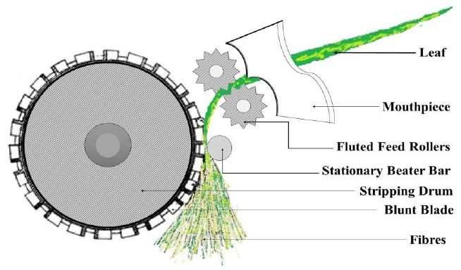 See figure: 'Figure 2. Sketch of simple fiber decorticator.' from publication 'Agave Americana Leaf Fibers' on ResearchGate, the professional network for scientists.