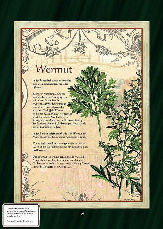 Wermut - Wermuttee