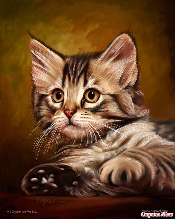 Красивые рисованные картинки с кошками