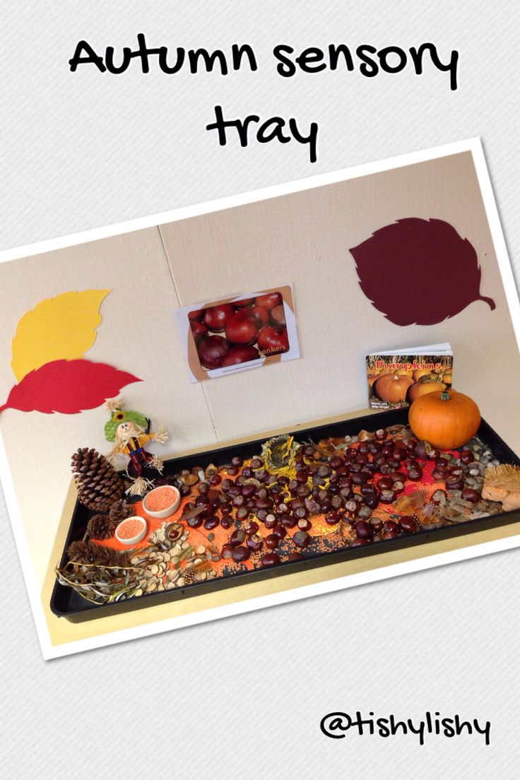 Autumn sensory tray