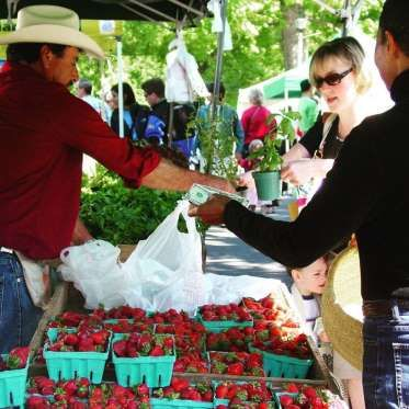 Located just outside D.C., the Falls Church farmers market features over 50 vendors, as well as the ... - Courtesy of Falls Church Farmers Market