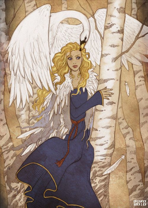 Swans are featured strongly in celtic mythology. Some of the most famous tales are:    § The Children of Lir  § The Wooing of Étaín  § Aengus and Caer Ibormeith