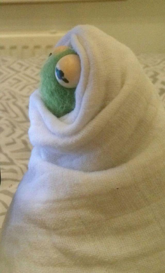 Pin En Kermit