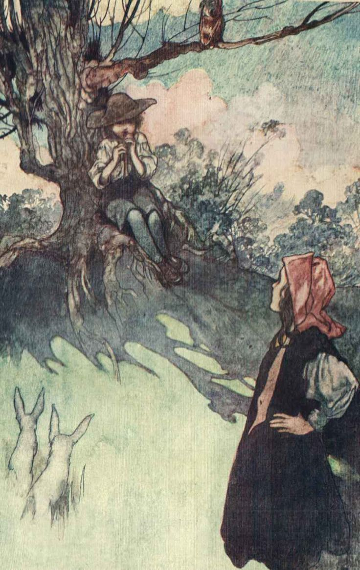 THE SECRET GARDEN by Frances Hodgson Burnett. One of the classic illustrations by Charles Robinson. http://www.amazon.com/dp/B00UXNM4JO